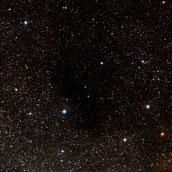 Barnard 356