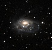 Arp 184 NGC 1961
