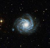 Arp 41 NGC 1232