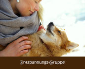 Hundeschule Entspannung Hibbelhunde Angsthunde München