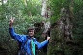 5月にドイツから屋久島へ。縄文杉1泊ガイドツアーへ。