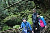4月の満月・新月を楽しむ、屋久島・縄文杉1泊ガイドツアー