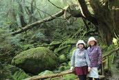 4月に親孝行旅行、大阪から屋久島へ。縄文杉1泊ガイドツアーにて。
