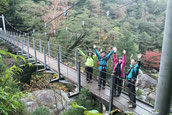 白谷雲水峡・さつき吊橋で(白谷雲水峡ガイドツアー)