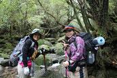 大阪から屋久島へ(10月の女性限定・縄文杉1泊ガイドツアーにて)