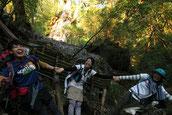 8月夏休みで静岡から屋久島・宮之浦岳縦走ガイドツアーへ。