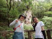 7月に静岡、東京から屋久島へ(女性限定・縄文杉1泊ガイドツアーにて)