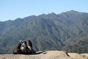 東京から女性ひとり旅で屋久島へ(10月の女性限定・縄文杉1泊ガイドツアーにて)
