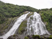 大川の滝,屋久島,滝
