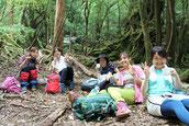 登山弁当でお昼ご飯中の女子旅(白谷雲水峡・苔むす森ガイドツアー)