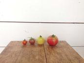 八兵衛トマト4種