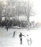Bild: Seeligstadt Chronik 1979
