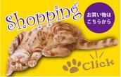 ショッピングページへ→