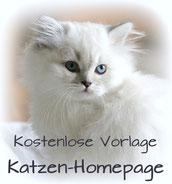 Kostenlose Vorlage für gratis Katzenhomepage, Bildquelle: bkh-von-der-kampenwand.de