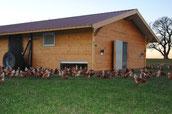 Reisach Freilandeier Hühnermobil
