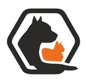 Без Дома - Фонд помощи животным во Владивостоке