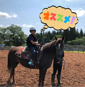 岩手 乗馬 しずくいしYU-YUファーム(初心者体験乗馬)
