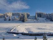 Blick hinters Haus im Winter