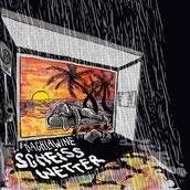 Dachlawine - Scheiss Wetter