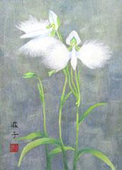 第6回新春日本画展