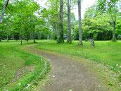 画像;公園の道、キャリアの道筋