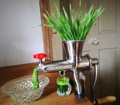 Weizengras Entsafter Edelstahl manuell Wildkräuter Weizengraspresse Weizengrassaft