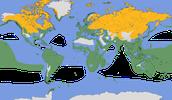 Karte zur Verbreitung der Laridae