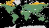 Karte zur Verbreitung der Habichtartige (Accipitridae)