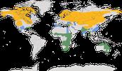Karte zur Verbreitung der Kraniche (Gruidae)