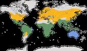 Karte zur Verbreitung der Wiesenweihe (Circus pygargus)