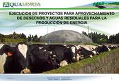 Diseño y construccion de biodigestores -  produccion de biogas - energias renovables