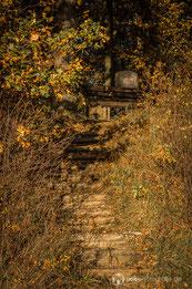 Der Riesen Stein auf dem herbstlichen Krahnberg bei Gotha