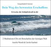 CD-Cover mit einem Surfer, der auf stahlblauem Meer auf weißen Schaumkronen wellenreitet.