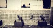 富田林公衆浴場