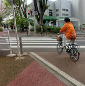 狭山・境緑道(多摩湖自転車道)は快適な道ですが、ときどき一般道を横断するので注意です