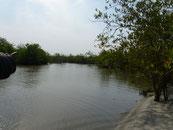 Passage Meningbe-Taayaki