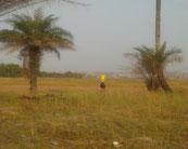 Wasser tragende Frau in Taayaki