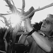Benoit Fleury, sculpteur sur bois, bronzes, sculpture oiseaux, sculptures en bronze, oiseaux, galerie d'art st paul de vence, galerie d'art cannes