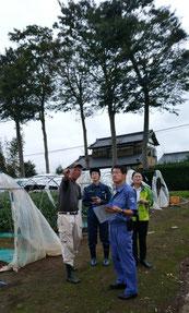 紙智子参議院・田村貴昭衆議院議員のトマト生産農家の被害視察