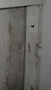 Schimmelpilzbefall an Wand und Holz