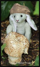 Pilz Garten Hase