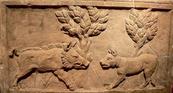 COLONIA (Germania) - Bassorilievo romano in cui un cane fronteggia un cinghiale