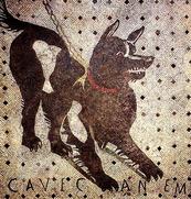 """POMPEI (Napoli - Italia) - Ritrovamento di un mosaico che ritrae un cane sul pavimento all'entrata di un'abitazione con la scritta CAVE CANEM, una sorta di """"attenti al cane"""""""