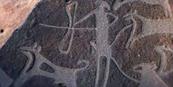 VALCAMONICA (Brescia - Italia) - Incisioni rupestri di cani ad opera dei Camuni