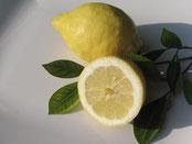 Text Zitrone / Lemon