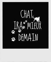 tee shirt femmes chats