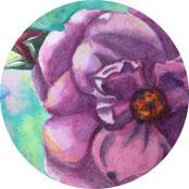 Ein Jahr mit Blumen - Rose malen - DIY