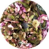 Dekoration - Herbstlicher Türkranz aus Hortensienblüten, Lampenputzergras und Heiligenkraut - DIY