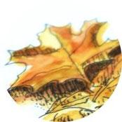 Inspiration - Herbstlaub in Tusche und Aquarell malen - DIY