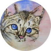 Inspiration - Katze in Acryl malen - DIY